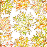 Autumn background, maple leaves  and paint splashes, drops, blots. Foe web-design Stock Photography