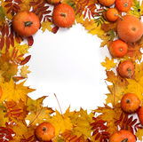 Autumn background with maple leaves and pumpkins. Stock Photo