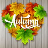 Autumn background with maple leaves shape heart on wood board background. Illustration of Autumn background with maple leaves shape heart on wood board Stock Images