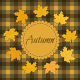 Autumn background with maple leaves. Vector illustration Stock Image
