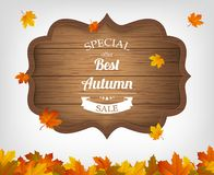 Autumn background with maple leaves and wooden sign. Autumn sale. Vector. Illustration Stock Photos