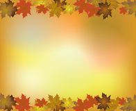 Autumn background with Maple leaves. Vector Royalty Free Stock Image