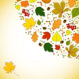 Autumn background for messages with leaves Royalty Free Stock Photography