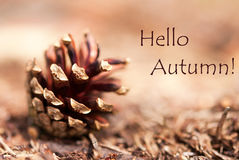 Autumn Background met Hello-de Herfst royalty-vrije stock afbeelding