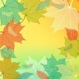 Autumn Background mit Hand gezeichneten gefallenen Blättern Lizenzfreie Stockfotografie