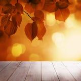 Autumn Background mit rotem Linden Leaves Stockfoto
