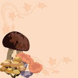 Autumn background with mushrooms Stock Photography