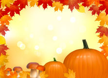 Autumn background with mushrooms pumpkins. Royalty Free Stock Image