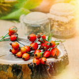 Autumn Background with Natural Elements Stock Image