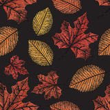 Autumn background.  objects. Royalty Free Stock Photos