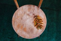 Autumn Background Of Fall Leaves On The Wooden Board, Top View Royalty Free Stock Photo