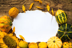 Autumn background old board space text Royalty Free Stock Photography