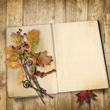 Autumn background. Old book on a wooden background with leaves Stock Photos