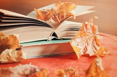 Autumn background. Stack of old books on the table among the dry yellow maple autumn leaves Stock Photos