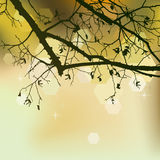 Autumn background, ornament Stock Images