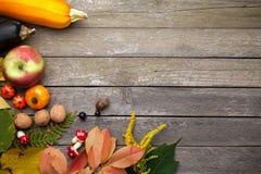 Autumn Background på trä royaltyfri foto