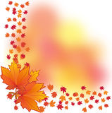 Autumn background, part 2 Stock Photography