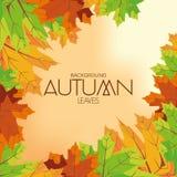 Autumn Background Pattern Template abstracto Fotografía de archivo