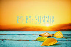 Autumn background with the phrase BYE BYE SUMMER Royalty Free Stock Images
