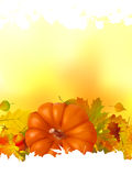 Autumn background with place for your text. EPS 8 Stock Photography