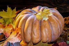 Pumpkin and foliage stock image