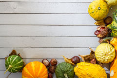 Autumn background with pumpkin and leaves Stock Photos
