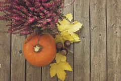 Autumn background with pumpkin and other plants Stock Photo