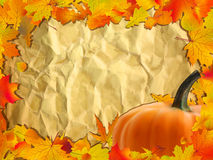 Autumn background with Pumpkin on paper. Royalty Free Stock Photos