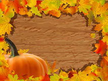 Autumn background with Pumpkin on wooden board. Stock Photography