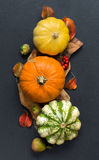Autumn background - Pumpkins, acorns, leaves and berries Royalty Free Stock Photo
