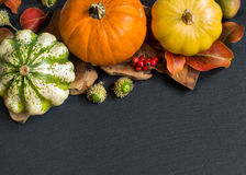 Autumn background - Pumpkins, acorns, leaves and berries Stock Photo