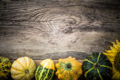 Autumn background pumpkins board Stock Images