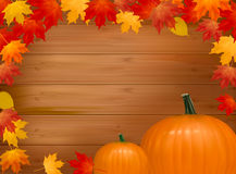 Autumn background with pumpkins. With copy space. Royalty Free Stock Photography