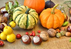 Autumn background with pumpkins, fruits and nuts Royalty Free Stock Images