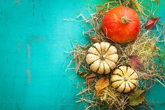Autumn background with pumpkins on a hay with autumn leaves. Top view Royalty Free Stock Photos