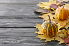 Autumn background with pumpkins and leaves Royalty Free Stock Photography