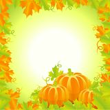 Autumn background of pumpkins and leaves Stock Photography