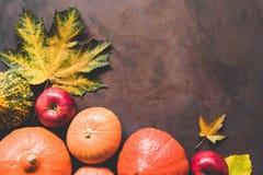 Autumn Background Pumpkins Maple Leaf stock photography