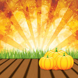 Autumn background. Pumpkins on wooden background with leaves. Autumn background. Vector Stock Image