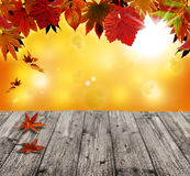 Autumn background with red falling. Old table Royalty Free Stock Photos