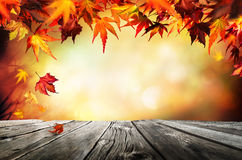 Autumn background with red leaves. Wooden planks Stock Image