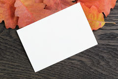 Autumn background with red oak leaves on stained oak table Royalty Free Stock Photography
