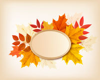 Autumn background with red, yellow, orange leaves. Royalty Free Stock Photo