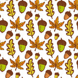 Autumn background. Seamless pattern with acorns and maple, oak leaves. Hand drawn vector Royalty Free Stock Photography