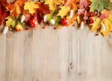 Autumn background. Seasonal autumn nature berries, pumpkins, apples and flowers on the wooden background stock photography