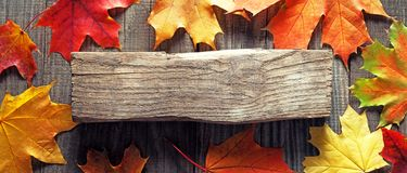 Autumn background with signboard, orange leaf on old grunge wood. Deck, copy place for inscription, top view, tablet for text. top view stock images