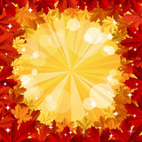 Autumn background with space for text Stock Images