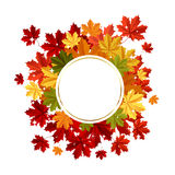 Autumn background with space for text Royalty Free Stock Photo