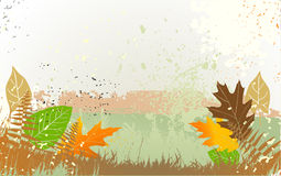 Autumn background with a space for a text Royalty Free Stock Photography
