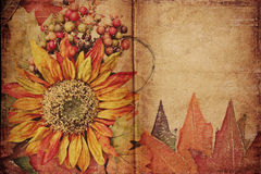 Autumn background with space for your text or imag Stock Photos